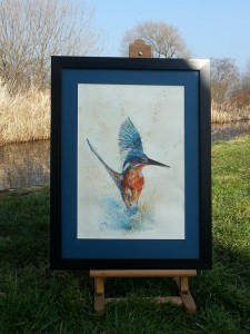 KINGFISHER RISING