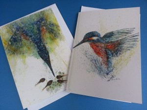 Shroppie kingfisher cards
